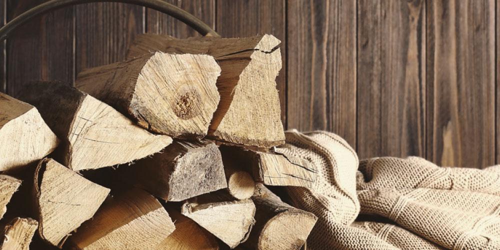 Biomasse polveri sottili immagine in evidenza