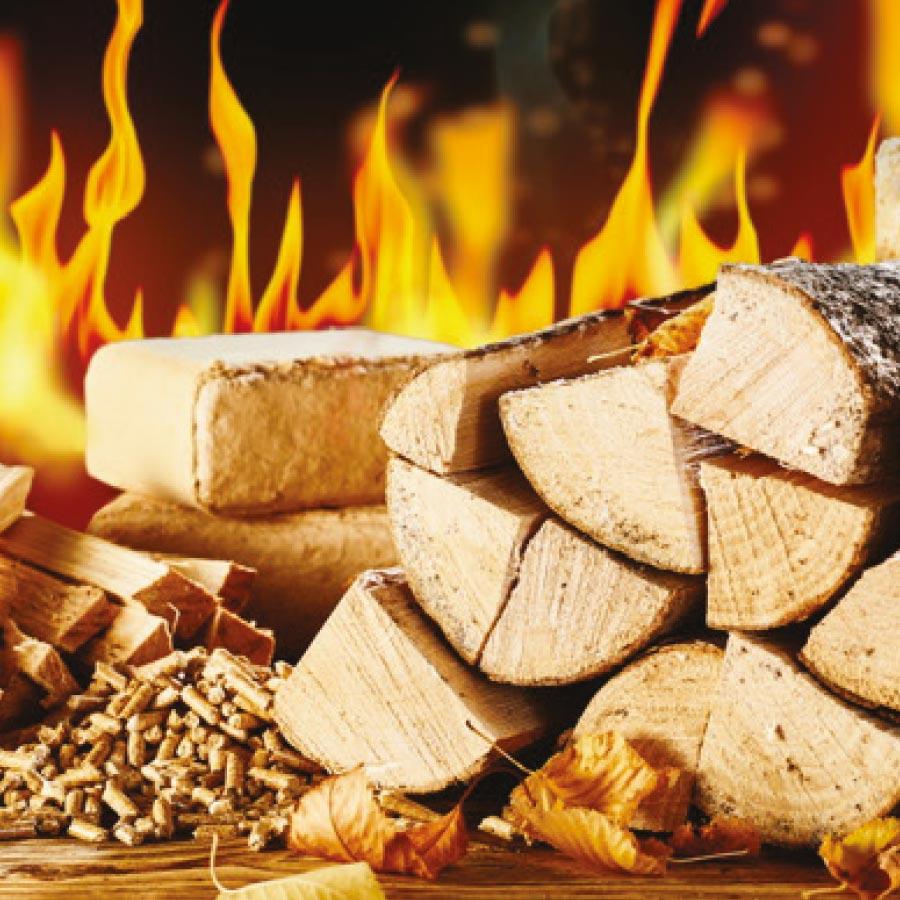 Biomasse polveri sottili img1