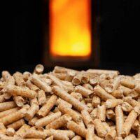 Prospettive di sviluppo per l'industria del pellet_4754