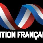 Vendite di prodotti per il riscaldamento a legna in Francia: il 2020 registra un forte calo