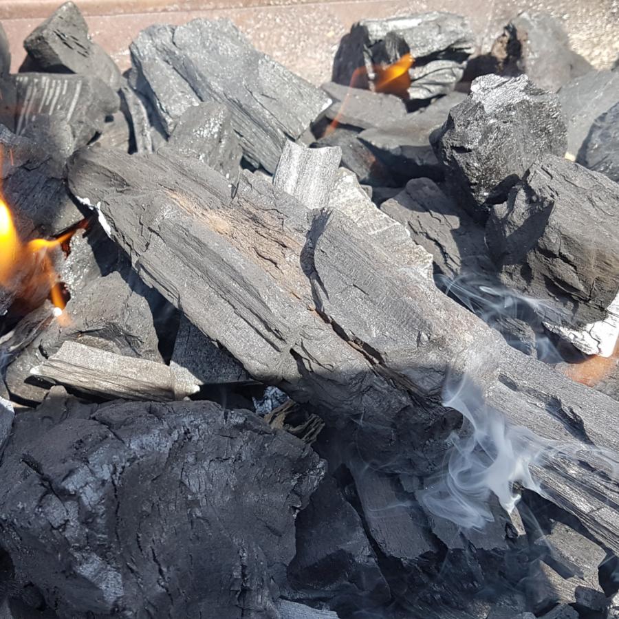 Conosciamo davvero la carbonella?